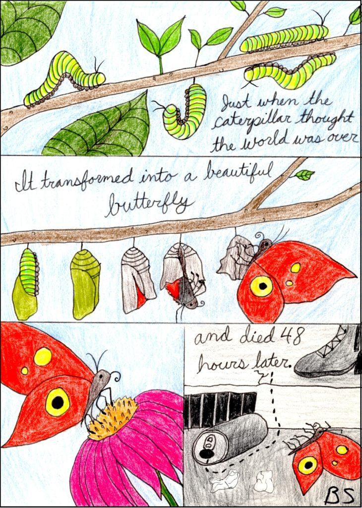 Butterfly Comic